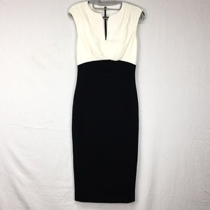 Ted Baker Colorblock Adeba Bodycon Midi Dress